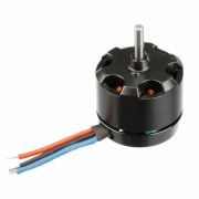 Motor WS-13-002 Rodeo 110